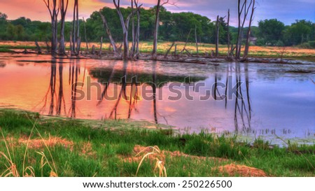 An HDR landscape of a marsh in the meadow - stock photo