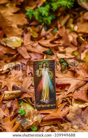 an icon with the picture of the Merciful Jesus among fallen leaves in Autumn: the translation of the Italian writing on bottom is Jesus, I trust in you