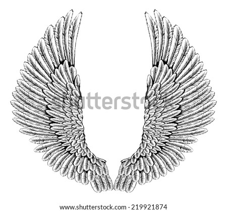 An illustration of a pair of angel or eagle wings spread - stock photo