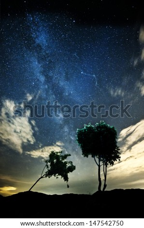 An image of a milky way and trees - stock photo