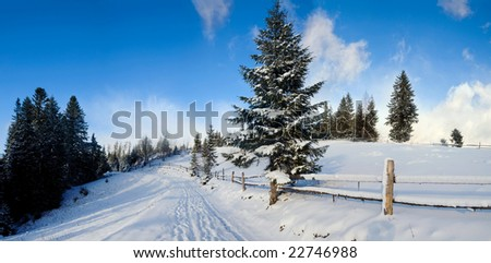 An image of a road in winter mountains and fir-trees