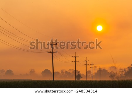 An image of a sunset over a golden field - stock photo