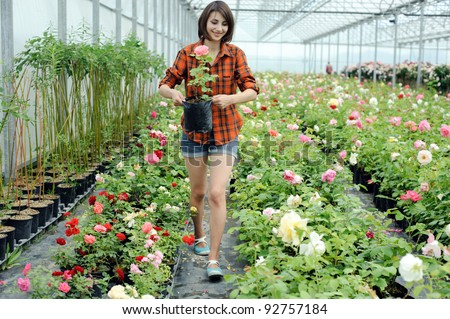 An image of a woman working in a greenhouse - stock photo