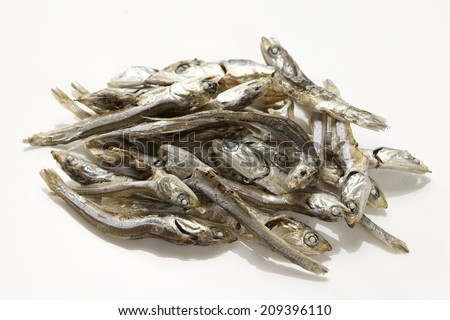 An Image of Anchovies - stock photo