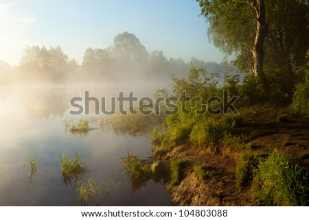 An image of beautiful misty summer morning. - stock photo