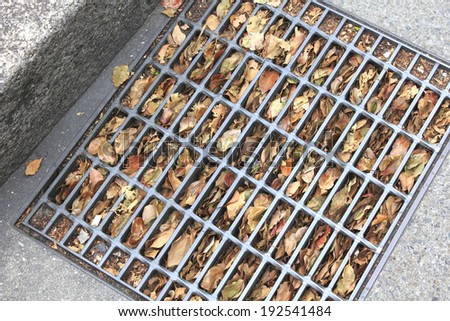 An image of Drain outlet of the road was clogged with dead leaves