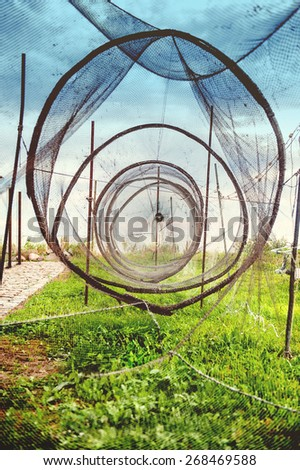 An image of fishing net  - stock photo