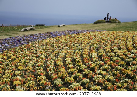 An image of Flower Garden