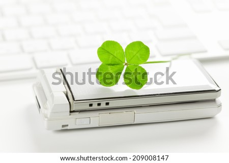An Image of Four Leaf Clover
