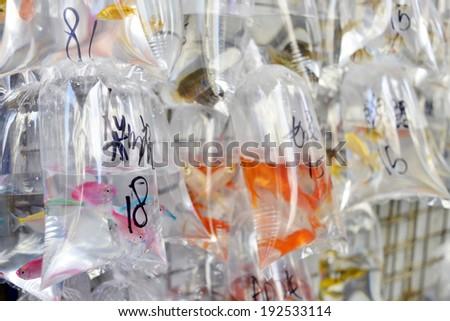 An image of Goldfish Street in Hong Kong - stock photo