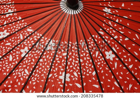 An Image of Japanese Umbrella - stock photo