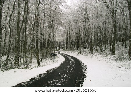An Image of Snow-Covered Road