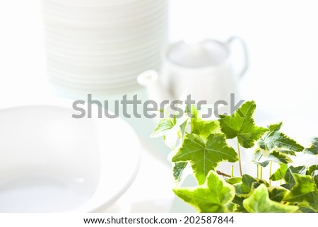 An Image of Tableware And Ivy
