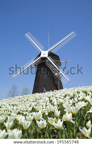 An image of Windmill