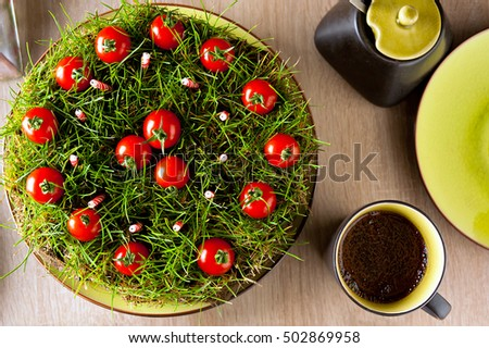 An improvised garden cake made from ground, grass, candles and cherry tomatoes.
