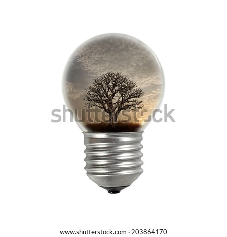 An incandescent light bulb with view of the silhouette of a lone gnarly tree against a surreal sunset sky for the concept of sustainable energy from green technology. - stock photo