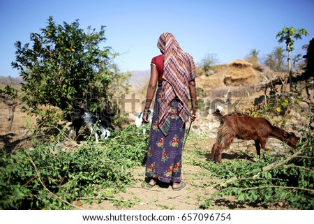 sheep ranch hindu single men Sheep ranch army singles as a green beret in the armed forces we know how important it is to find a partner who will love and care for you, while unconditionally supporting your obligations to our country and the army.