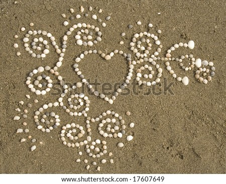 An intricate pattern of seashells lies on a wet, sandy background. - stock photo