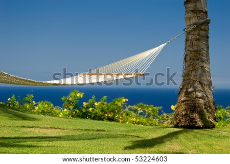 An inviting hammock in an island paradise - stock photo