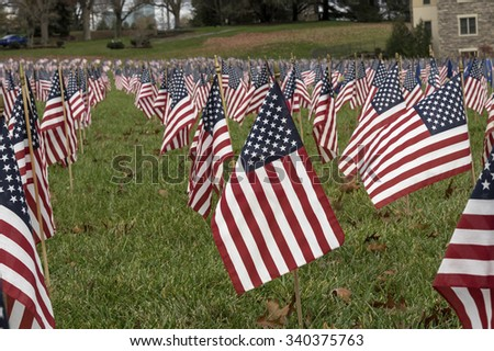 An isolated American Flag is a sea of flags honoring our veterans.