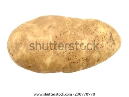 An isolated idaho potato - stock photo