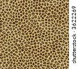 an large illustration of spotted leopard or jaguar skin or fur - stock photo