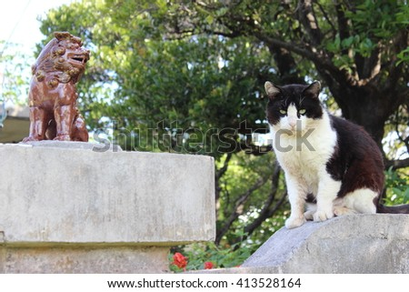 An Okinawan lion and a cat