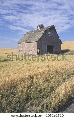 An old barn in a wheat field with a blue sky in Southeast WA