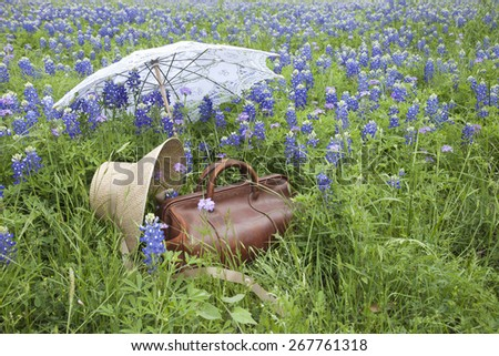 An old brown leather suitcase with a straw bonnet and white parasol in a field of bluebonnets in the Texas Hill Country - stock photo