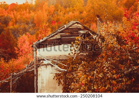 An old building in golden  Fall colors. - stock photo