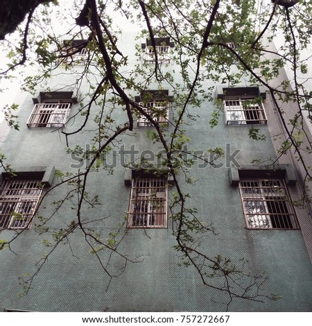 An old building with tree, somewhere in Taipei, Taiwan.