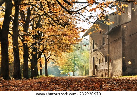 An old church in a forest - stock photo