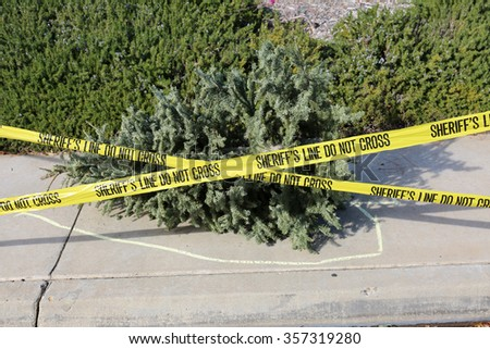 An old dead dried Christmas Tree lays upon a sidewalk with a Yellow Chalk Outline and Sheriff Caution Tape marking off the Crime Scene of the end of another Christmas - stock photo