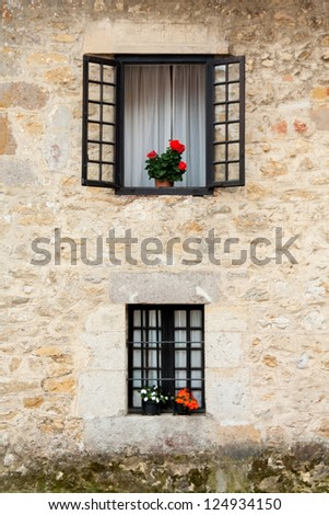 An old flowery window - stock photo