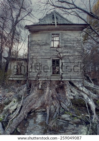 An old home being over taken by roots and trees.