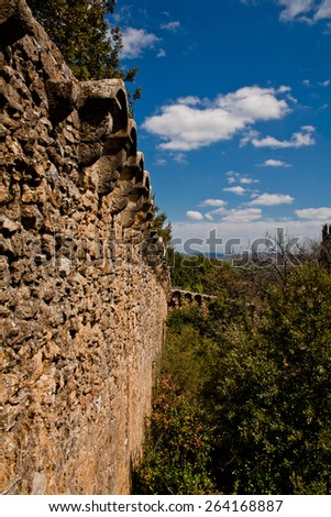 An old medieval wall and trees in San Quirico d'Orcia