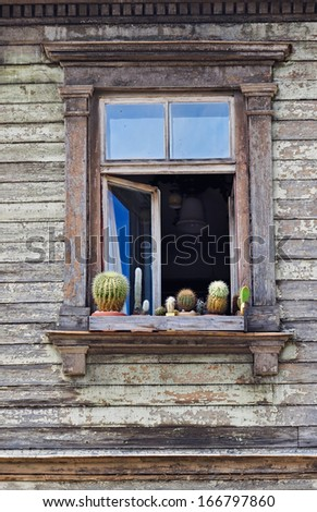 An old open window with cactuses - stock photo