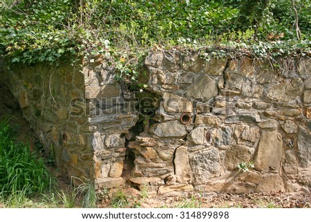 An old rock cracked nearly in two with plants growing inside it