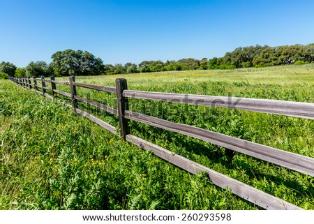 An Old Texas Wooden Rail Fence with a Field Peppered with Texas Wildflowers - stock photo