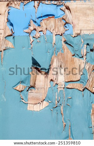 An old wooden door with peeling blue paint. Seamless background or wall paper image with interesting patterns of peeling blue paint on an old wooden door. Paint is important to help protect wood. - stock photo