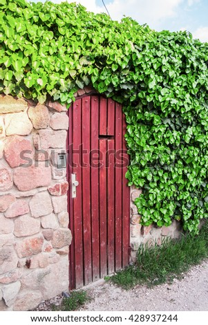 An old wooden door with stone wall and ivy.