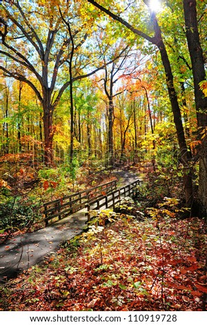 An old wooden walking bridge over a stream in Maryland during Autumn - stock photo