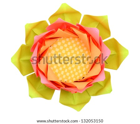 An open lotus paper bloom isolated white - stock photo