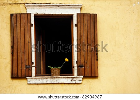 An open window with flower against a plastered textured wall and  wooden shutters..