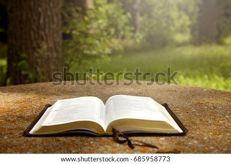 opened bible on table green garden stock photo edit now 685958773