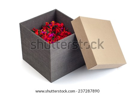 An opened hard paper gift box filled with decorative colorful shredded paper. Image on white background. - stock photo
