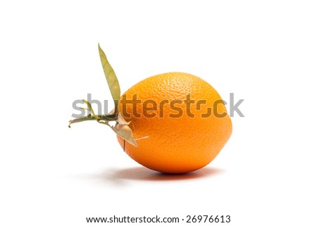 An orange off the tree isolated on white.