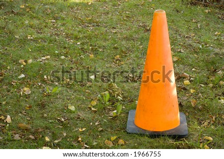 An orange safety cone set up on green grass with fall leaves.  Cone is to the side to allow text to the left.