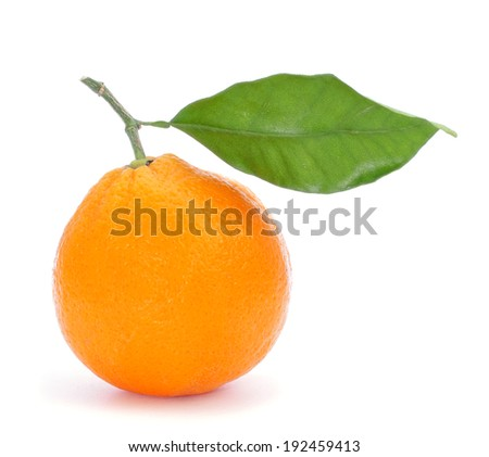 an orange with a green leaf on a white background