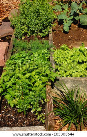 An organic kitchen garden made with wood, rocks and compost